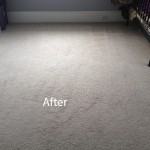 Cranberry Juice Stain Removal Lynnwood B