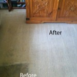 Dirt Stains Removal Lynnwood