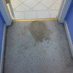Lynnwood-Vomit-1-before-carpet