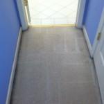 Lynnwood-Vomit-2-after-carpet