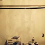 Lynnwood-mold-damage