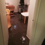Lynnwood-office-room-flood-damage-repair
