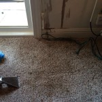 Oil-Stain-Removal-After-Lynnwood