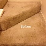 Stairs-Carpet-Cleaning-Lynnwood-A