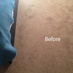 ink stain removal Lynnwood-A