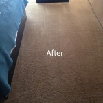 ink stain removal Lynnwood-B